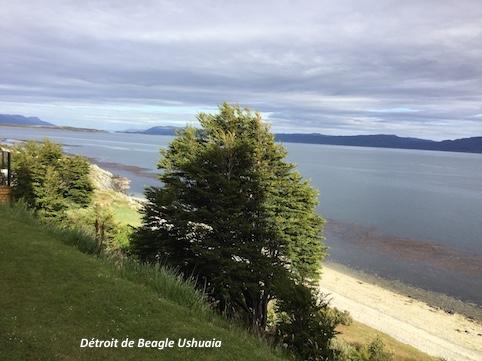 10. DETROIT DE BEAGLE USHUIAI