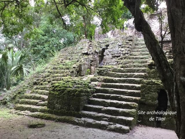 Tikal 3
