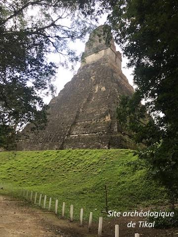 Tikal 5