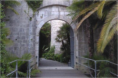 Andantino - Soirée